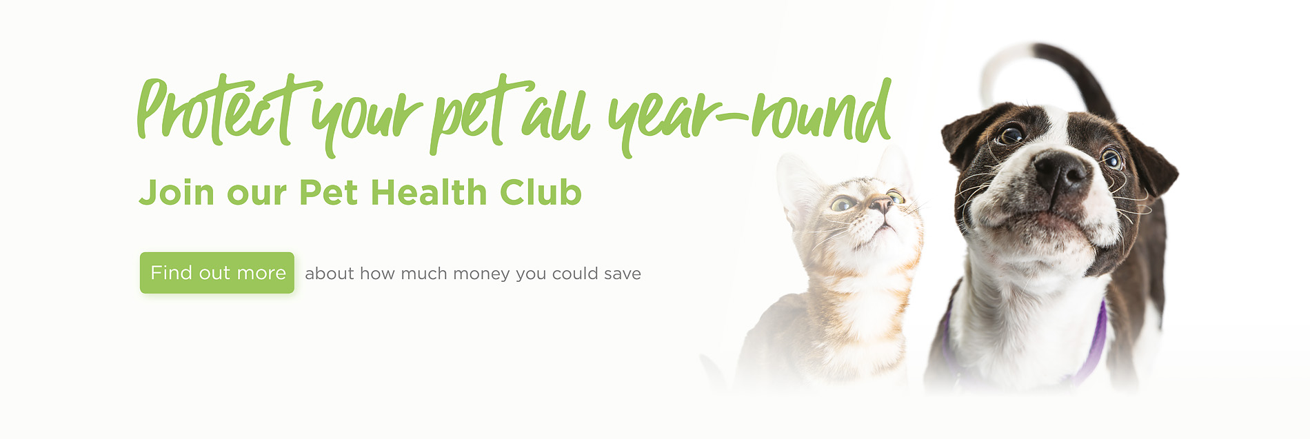 Blythwood Vets in Hatch End, Bushey, Northwood, and Stanmore
