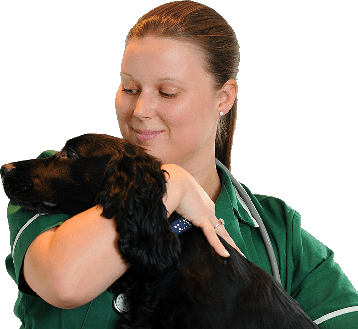 services nurse with dog
