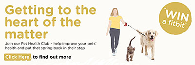 Join our Pet Health Club and win a FitBit!
