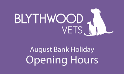 August 2019 Bank Holiday Opening Hours