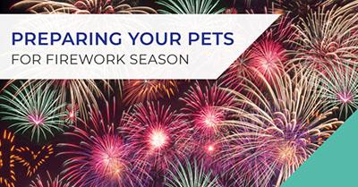 Seasonal pets firework season